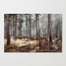 Pale Woods Canvas Print