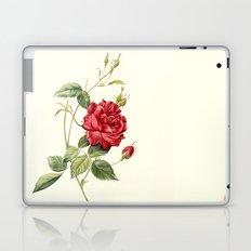 Botanical study - Rose Laptop & iPad Skin