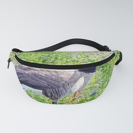Canada Goose close-up Fanny Pack