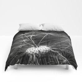 just dandy Comforters