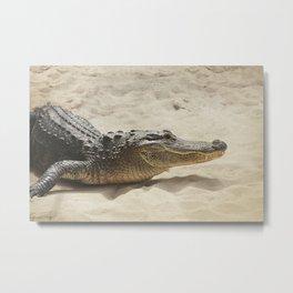 Alligator Photography | Reptile | Wildlife Art Metal Print