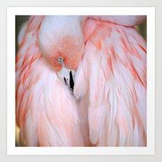 Flamingo #2 Art Print