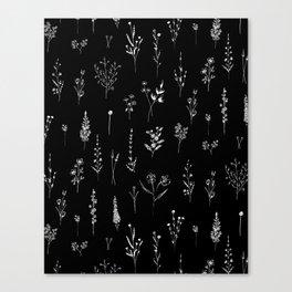 Black wildflowers Canvas Print