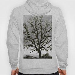 L'arbre de Gourdon Hoody