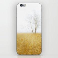 Sandy Delta iPhone & iPod Skin