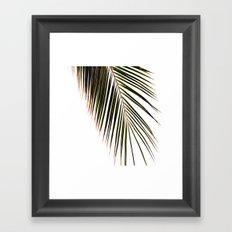 Palm #  # Framed Art Print