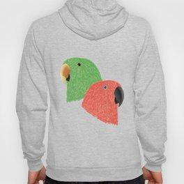 Eclectus Parrots Hoody