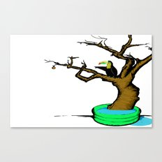 Tuki Canvas Print