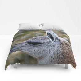 cute young Guanaco Comforters