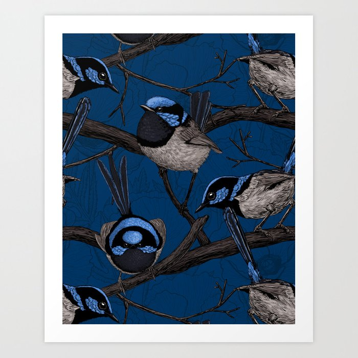 Night fairy wrens Art Print