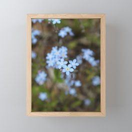 3 Forget-Me-Nots in the Center Framed Mini Art Print