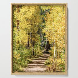 Yellow Tree Road // Hiking in the Forest Deep Into Autumn Colorful Trees Serving Tray