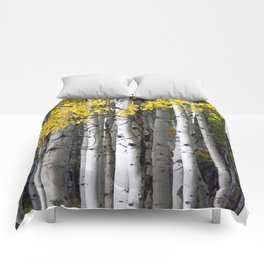 Yellow, Black, and White // Aspen Trees in Crested Butte Comforters