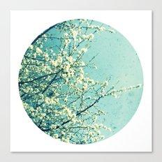 Blossom circle Canvas Print