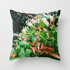 First Light of Day Throw Pillow