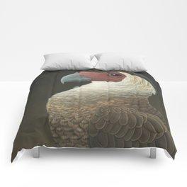 Guadalupe Caracara (Caracara lutosa) Comforters