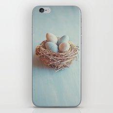 Spring Nest iPhone & iPod Skin