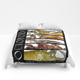 Octopus of the World Comforters