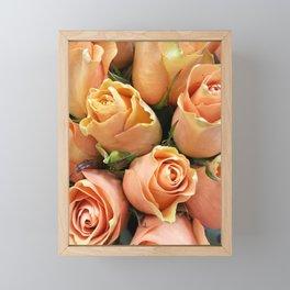 Peach Roses Framed Mini Art Print
