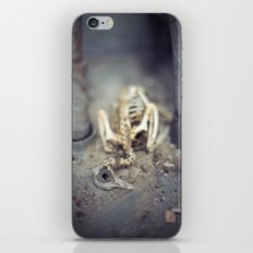 A Shell of my Former Self iPhone & iPod Skin