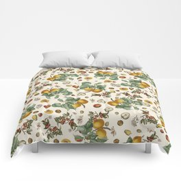 Apples Pears Peaches Comforters