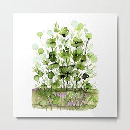 Floral Charm No.1I by Kathy Morton Stanion Metal Print