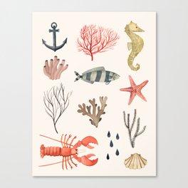 Sealife Schoolchart Canvas Print