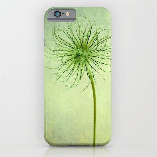 pulsatilla seed head iPhone & iPod Case