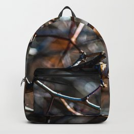 Thorns On A Sunny Autumn Day Backpack