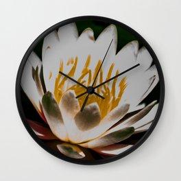 Aquatic royal flower Wall Clock