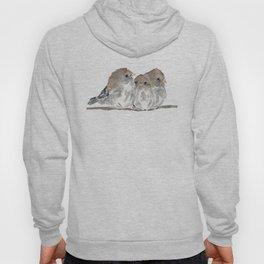 Cuddling birds Hoody