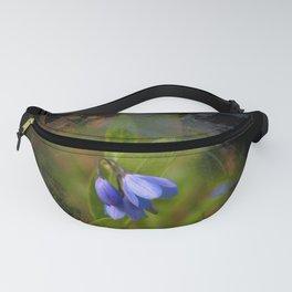 Pretty bluebells on black Fanny Pack