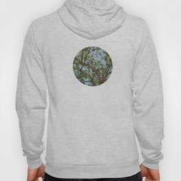 Spring Time Tree Hoody