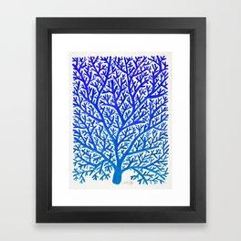 Fan Coral – Blue Ombré Framed Art Print