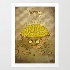 Walnut - Food series Art Print
