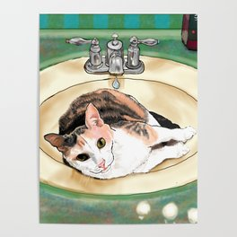 Catrina in the Sink Poster