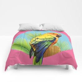 Sun Conure Parrot Comforters
