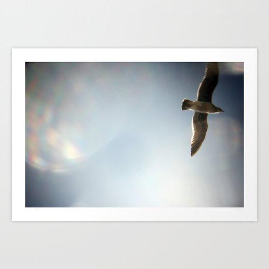 sky/gull Art Print
