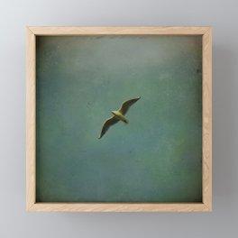 Vintage Flight Framed Mini Art Print