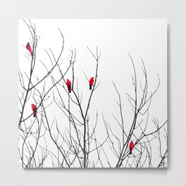 Artistic Bright Red Birds on Tree Branches Metal Print