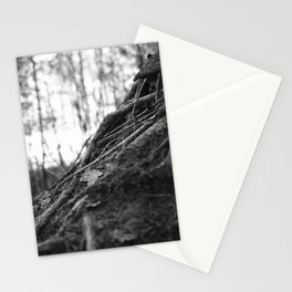 Dark Tree Roots | The Netherlands | Black & White | Nature Photography | Fine Art Photo Print Stationery Cards