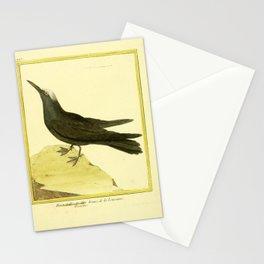103 mouette brune (Fr) Stationery Cards