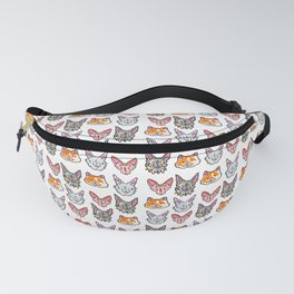 Permanent Four 2019 Fanny Pack