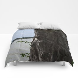 Twisted Tree Trunk Comforters