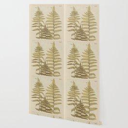 Vintage Fern Botanical Wallpaper