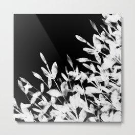 Foliage Series no1 black Metal Print
