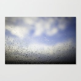 Inside, out.  Canvas Print