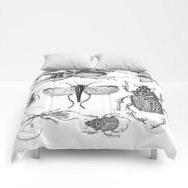 Vintage Beetle black and white drawing Comforters