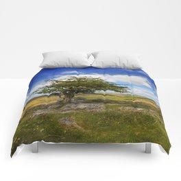 Dartmoor Tree Comforters