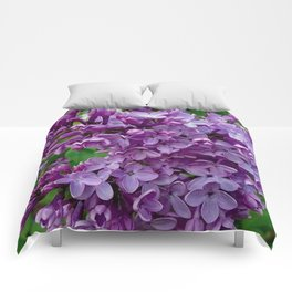 Lilac Blooms Comforters